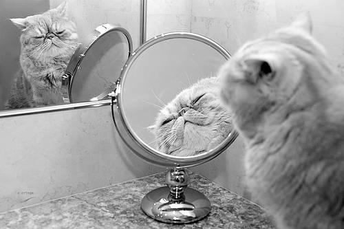 Как повысить свою самооценку